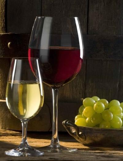 红酒招商代理条件